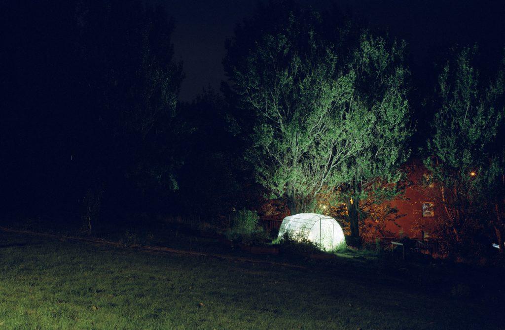 Daniel Sambo - Urban Roots (2011)