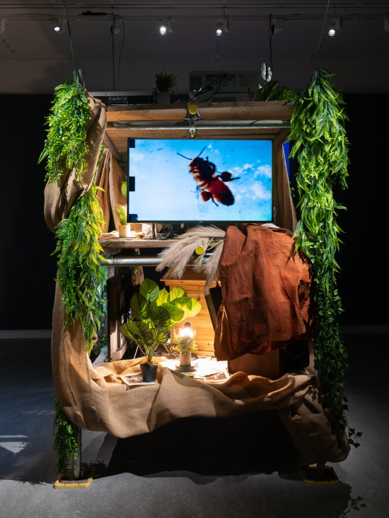 An art installation with a video screen and a honeybee, surrounded by plants.