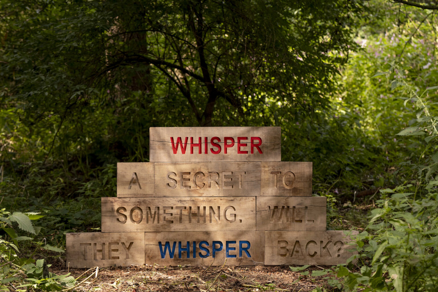 An image of wooden block engraved in upper case letters are arranged in a short stack. They say: 'Whisper a secret to something. See if they whisper back?'.
